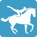 Logo voltige listitem